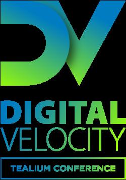 dv2019_logo_vert_01