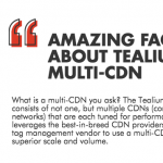 Infographic: 8 Amazing Facts about Tealium's Multi-CDN