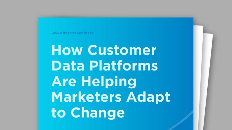 State of the Customer Data Platform (CDP)